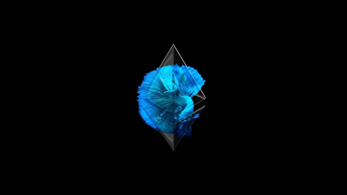 Ethereum, Crypto